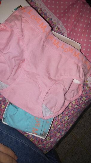 南极人女士内裤女95%舒适棉纯色大码三角中腰女式内裤7条礼盒装 纯色爱恋款 L/165 晒单图