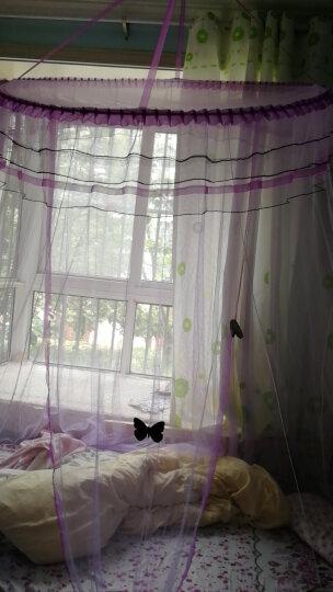 【正常发货】蚊帐 吊顶圆顶式蒙古包蚊帐1.5米1.8米 公主宫廷式上床下床子母床圆床上铺下铺蚊 欧式浪漫-水绿 圆顶直径1.2米 2.0m床 晒单图