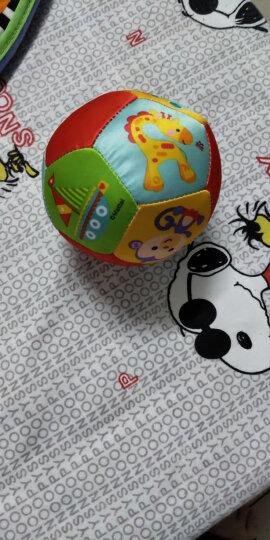 费雪 婴儿布书早教书宝宝婴儿玩具0-1岁益智撕不烂书本礼物 四套组合精装+认知布球(足球12面) 晒单图