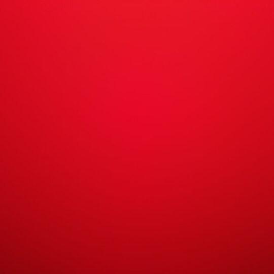 小学生必备作业本:纠错本+摘录本+英语本+田字格本+听写本+拼音田字格本+周记本(套装7本) 晒单图