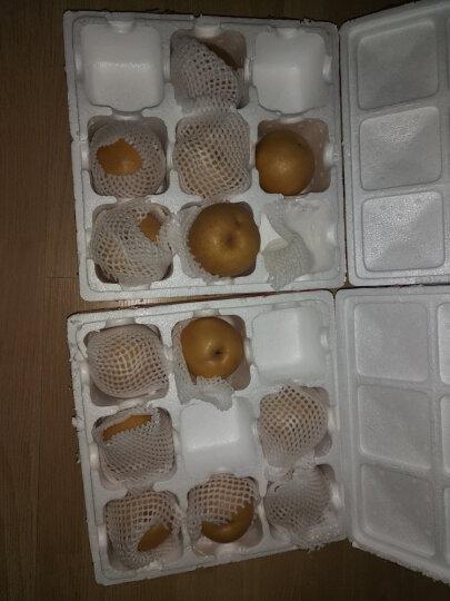 美果汇 山东莱阳丰水梨2.5kg  梨子 新鲜水果 晒单图