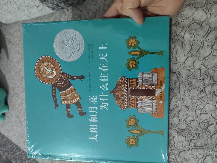 凯迪克银奖绘本:暴风雨中的孩子(奇想国童书) 晒单图