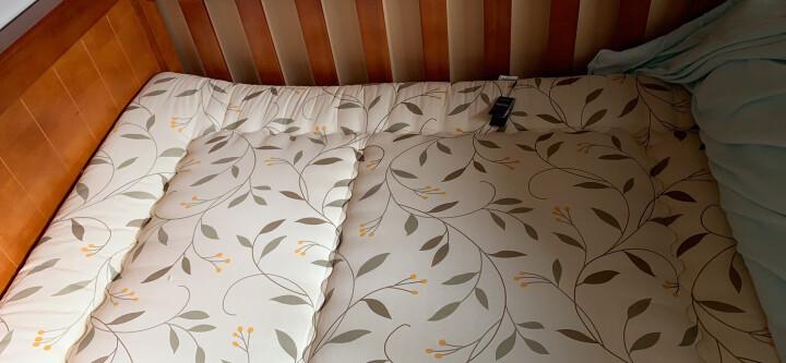千薰草 日式榻榻米床垫 1.8米学生宿舍床垫被 加厚床垫床褥子地铺 1.2m单双人可折叠定制订做 浜松6181BL 180cm*200cm 晒单图