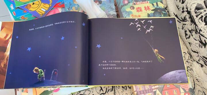 小王子纯美电影原图珍藏版+小王子电影笔记本心之旅(珍藏版 套装共2册) 晒单图
