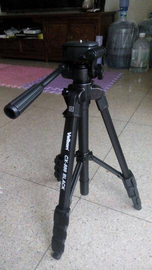 金钟(Velbon)CX-888三脚架 承重2kg TY脚管 绞齿中轴 单把手云台 微单单反摄像机均可使用 标配原装脚架包 晒单图