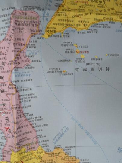 世界热点国家地图--意大利地图挂图 折叠图(折挂两用  中外文对照 大字易读 865mm*1170mm) 晒单图