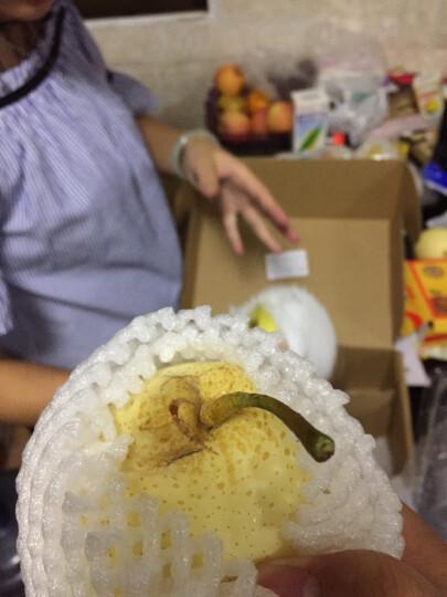 皇冠·丰水·雪花·秋月·鸭梨·翡翠酥梨 6种梨 尝鲜装 新鲜水果 晒单图