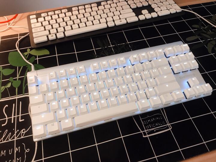 樱桃(CHERRY) MX8.0 G80-3880HXAEU-0 机械键盘 有线键盘 游戏键盘 87键单色背光  白色 樱桃茶轴 晒单图