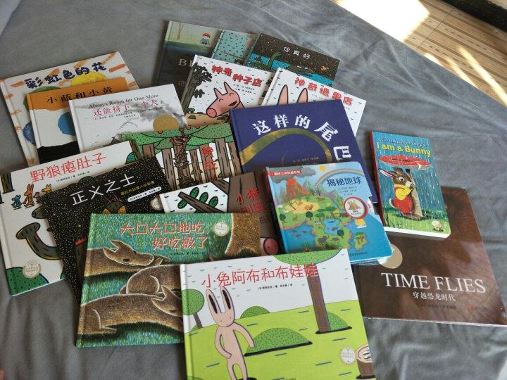 I Am a Bunny (A Golden Sturdy Book)我是一只兔子 低幼童纸板书 英文原版 晒单图
