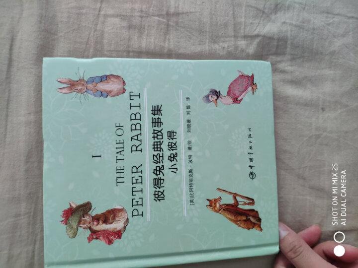 彼得兔经典故事集(附优美英文故事朗读光盘 套装共4册) 晒单图