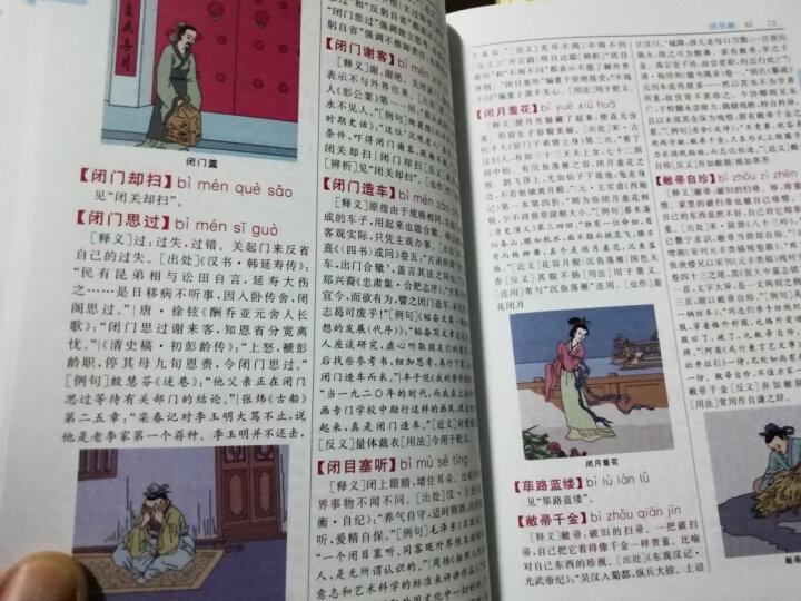 成语大词典彩色本 新修订版 现代成语词典初高中学生新华汉语成语大全字典辞书 32开 晒单图