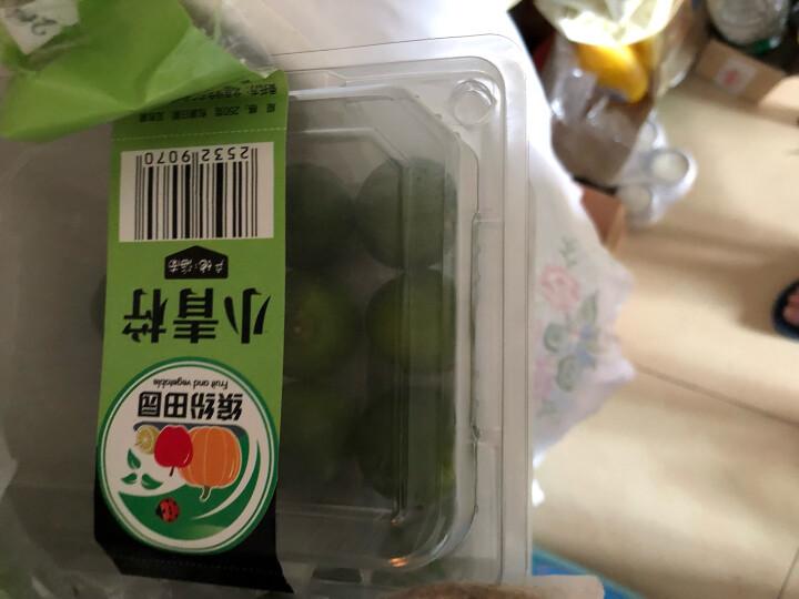 海南小青金桔 新鲜柑桔橘子水果 1kg 晒单图