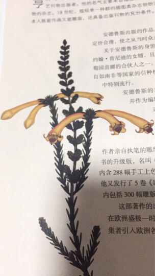 植物大发现 黄金时代的图谱艺术 晒单图