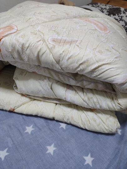 雅鹿·自由自在 被子家纺 保暖棉被被子冬天秋冬天被褥双人盖被冬被被芯 2*2.3米-6斤 天使羽翼 晒单图