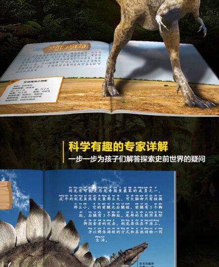 恐龙百科全书大探索全套6册注音版 3-6岁小学生儿童读物恐龙王国动物世界少儿科普故事书  晒单图