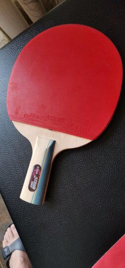 红双喜DHS E-E2F2乒乓拍套装双面反胶直拍/横拍各一块健身组合型(附带拍套) 晒单图