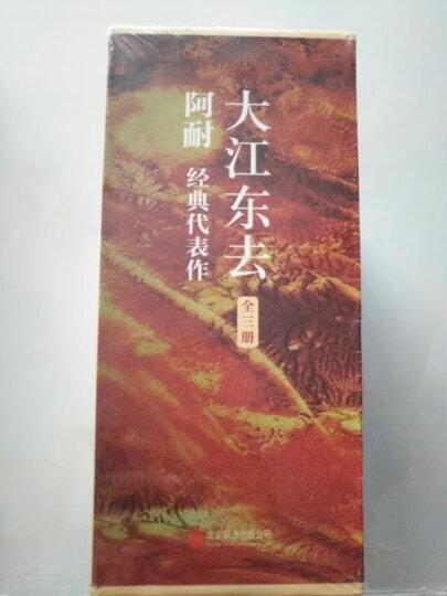 大江东去:全3册 晒单图