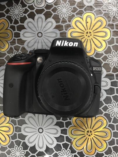 尼康(Nikon) D5300数码单反相机入门级 高清照相机自拍 翻转屏 18-55 f/3.5-5.6G套装 晒单图