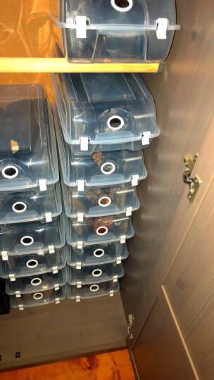 耐奔 10只装 透明鞋盒翻盖式 加厚塑料鞋盒收纳鞋子收纳盒鞋盒子整理盒收纳箱 XL码特大号【蓝色卡扣】4个装-靴子篮球AJ鞋盒 晒单图