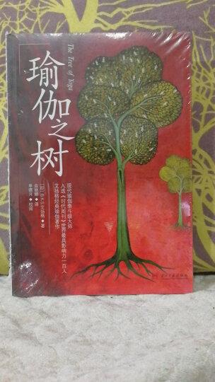 瑜伽之树 晒单图
