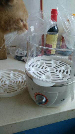 小熊(Bear)煮蛋器 家用蒸蛋器早餐机旋钮可定时煮蛋机单双层自动断电迷你送304不锈钢蒸碗ZDQ-2151 晒单图