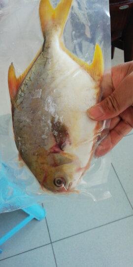 京鲁远洋 冷冻虾滑 240g(120gX2盘)袋装 火锅食材 自营海鲜水产 晒单图