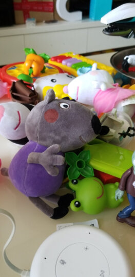 小猪佩奇毛绒玩具公仔 啥是佩奇 佩琪布娃娃儿童沙发抱枕宝宝安抚玩偶礼品新年生日礼物送女友 小号一家四口礼盒+恐龙 晒单图