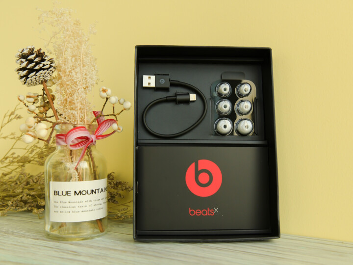 Beats X 蓝牙无线 入耳式耳机 运动耳机 手机耳机 游戏耳机 带麦可通话 蓝色 晒单图