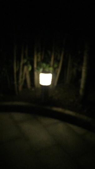 裕见不锈钢草坪灯 户外中式草地灯led园林景观灯庭院灯花园别墅灯路灯 不锈钢-市电款 晒单图