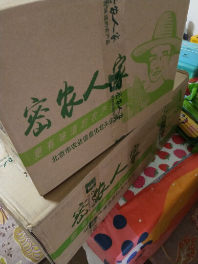 密农人家 新鲜蔬菜 小冬瓜 应季蔬菜750g 整个发货 晒单图