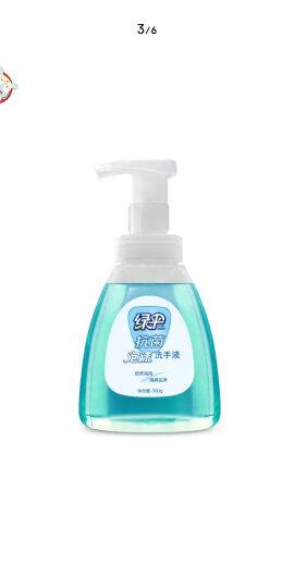 绿伞 泡沫洗手液300g/瓶+补充装280g/袋(2种香型随机发货) 晒单图