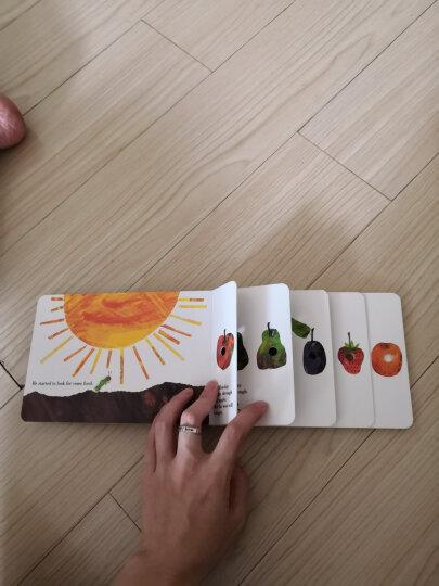 The Very Lonely Firefly  Board book 好寂寞的萤火虫 英文原版 晒单图
