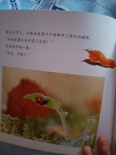 亲亲自然全11册避雨+捉迷藏等 幼儿成长绘本少儿百科故事书自然科学启蒙书 耕林亲亲自然摄影 晒单图