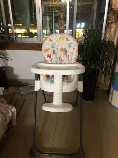 gb好孩子婴儿餐椅多功能儿童餐桌椅折叠宝宝餐椅吃饭座椅 红色Y9806-H002K 晒单图
