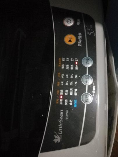 小天鹅(LittleSwan)5.5公斤 波轮洗衣机全自动  迷你洗衣机 小家优选 品质电机 TB55V20 晒单图
