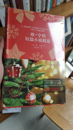 夜莺与玫瑰(买中文版全译本赠英文原版 套装共2册) 晒单图
