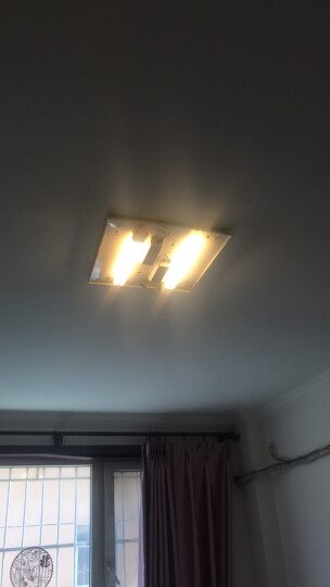 佛山照明 (FSL)三基色四针节能灯H管36W YDW36-H.RR 日光色 2支装 晒单图