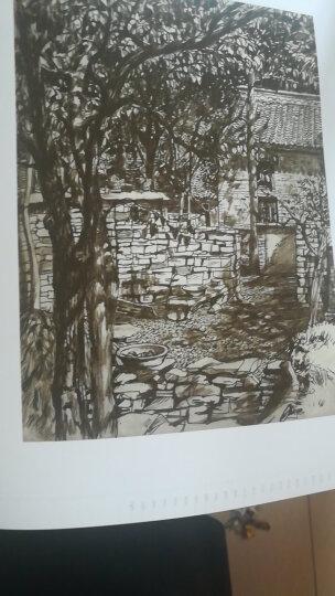 中央美术学院附中60年作品经典 晒单图