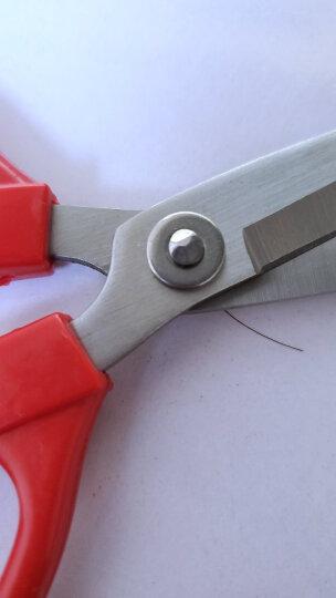 王麻子 5号吉祥剪刀 家用厨房缝纫剪子 JC35 晒单图