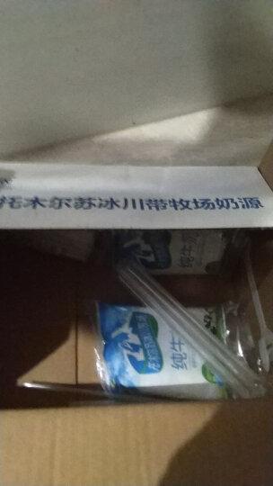 【两箱减10元】新疆新农牛奶无添加全脂纯牛奶利乐枕整箱袋装200ml*16包 晒单图