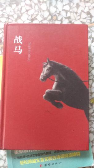 战马(2015版) (爱心树童书) 晒单图