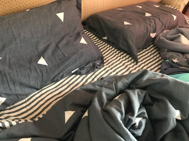九洲鹿 枕套家纺 全棉枕套 斜纹枕头套枕芯套 一对装 48*74cm 晒单图