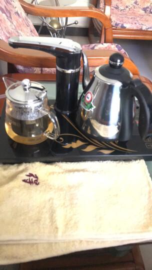 新功(SEKO) 电水壶全自动上水电热水壶保温玻璃壶茶具套装 烧水壶电茶壶F143黑色 晒单图