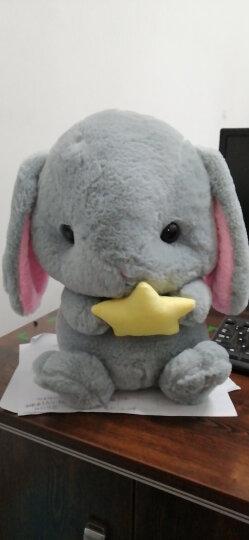 大号日本Loppy垂耳兔毛绒玩具长耳兔公仔布娃娃玩偶抱枕生日礼物女 白色萝卜款 80厘米【送玫瑰花】 晒单图