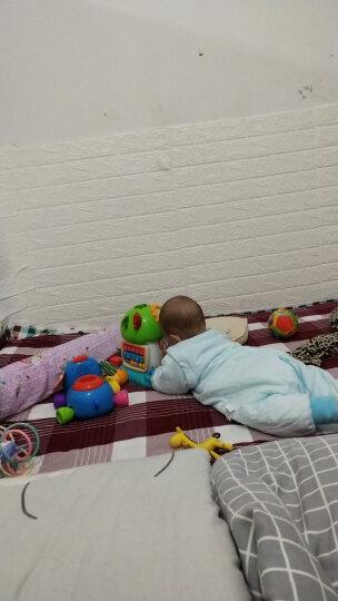 澳贝(AUBY)益智玩具儿童积木玩具宝宝趣味小树声光珠算电子琴智慧树(新旧配色随机发货)461574 晒单图
