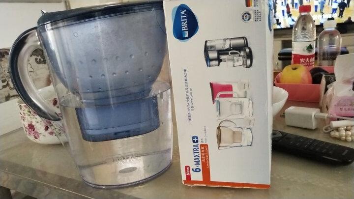 碧然德(BRITA) 家用滤水壶 净水壶滤芯 Maxtra 多效滤芯 1枚装 晒单图