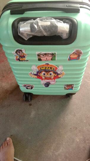 zeal姿旅 皮箱贴 旅行箱包贴纸A3大 个性DIY 图案随机 晒单图