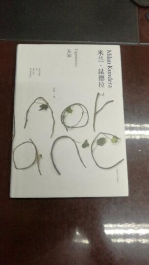 米兰·昆德拉:小说的艺术(精装) 晒单图