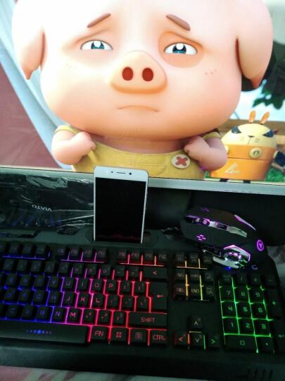 银雕吃鸡键盘鼠标耳机三件套(真机械手感键鼠套装 台式笔记本电脑游戏键盘 有线电竞外设usb)  黑色彩虹光键盘+游戏鼠标 晒单图