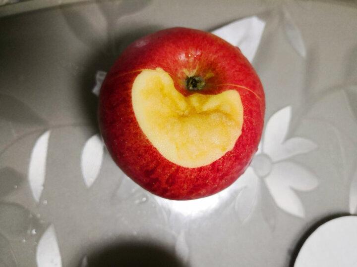 洛川苹果 陕西红富士  15个85mm果径 约4.5kg 苹果水果红色礼盒大果装 新鲜时令水果 15枚85 晒单图
